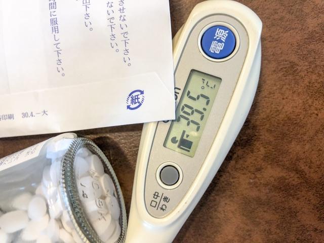 かかるとつらいインフルエンザ。予防のための薬膳×サプリ(2)